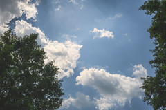 Sunny Clouds (Modkuse) Tags: clouds sky cloudy cloudscape cloudyday trees skyscape brightsky nikon nikond700 nikondslr nikkor 50mm 50mmf18 50mmf18nikkor