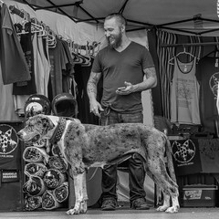 Best Pals (clarkcg photography) Tags: man dog male bluedomedistrict beard tshirts tent tattoos bigdog blackandwhite blackwhite bw
