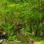 Canal del Pigüeña thumbnail