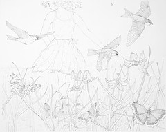 MeadowLilies (Alex Hiam) Tags: canada lily tree swallow butterfly grass meadow landscape girl boots drawing sketch