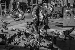 Frenzy (Leanne Boulton) Tags: people urban street candid streetphotography candidstreetphotography streetlife sociallandscape old elderly woman female lady feeding grain pigeons pigeon bird birds flock frenzy flying feathers chaos flight tone texture detail depth naturallight outdoor sunlight light shade shadow city scene human life living humanity society culture canon canon5d 5dmkiii 35mm ef2470mmf28liiusm black white blackwhite bw mono blackandwhite monochrome glasgow scotland uk