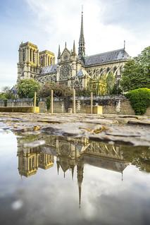 Notre-Dame de Paris - puddle reflection from Quai de Seine