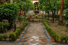 Real Alcazar, Seville, Spain (Blackburn lad1) Tags: alcazar garden seville spain andalusia flowers palace unesco whs xt20