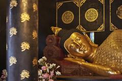Buddha at Wat Chedi Luang (Thomas Mülchi) Tags: chiangmai chiangmaiprovince thailand 2018 buddhism buddhisttemple temple buddha changwatchiangmai th
