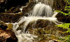WATERFALL (chris .p) Tags: carding nikon d610 capture rocks cardingmillvalley nt nationaltrust summer 2018 shropshire england june shropshirehills