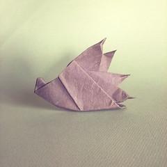 Hedgehog riccio - Stefano Borroni. (Stefano Borroni (Stia)) Tags: origami paperart piegarelacarta origamilove papiroflexia foldingpaper carta paper origamipaper natura animali arte hedgehog riccio cdoitalia