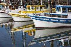 angelina (eb78) Tags: ca california sf sanfrancisco fishermanswharf boat ship harbor
