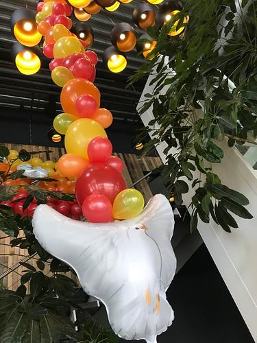 Ballonslinger Pinksteren Watertuin Spijkenisse