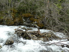 Andorra, Madriu (balavenise) Tags: andorra andorre trek trail marche hiking nature