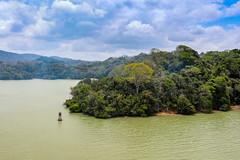 Gatun Lake, Panama Canal (Jill Clardy) Tags: 2018 cruise ncl norwegiancruiselines repositioning panama canal gatun lake jungle water clouds haze hazy 201804169l8a2319