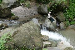 At Banjhakri Falls (Ankur P) Tags: india sikkim eastsikkim gangtok mountains himalayas banjhakri falls waterfall himalaya energypark