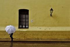 Habana Vieja - Convento Nuestra Senora de Belen 9 (luco*) Tags: cuba la havane habana havana vieja convento nuestra senora de belen jaune yellow amarillo windows parapluie umbrella fenêtre