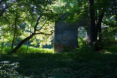 SB ruins strong morning light. IMG_2071 b (david.neville2776) Tags: siedliskabogusz podkarpackie ruiny dwór ruins old manor house morning light