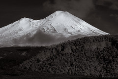 Volcan Llaima (josemcalvol) Tags: volcano snow llaima blackwhite patagonia conguillionatpark araucania chile southamerica
