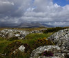 Sunny Interval - Connemara (Blarney Pilgrim1) Tags: wildatlanticway connemara ireland
