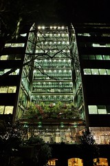 The Night Garden (Douguerreotype) Tags: london uk dark glass british buildings lights architecture city britain night gb urban england