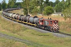 6616-Olavarría_1 (Ricardo_Tieso) Tags: general motors gr12 6606 olavarria tren ferrocarril ferroexpreso pampeano