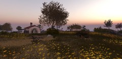 Beautiful horizon (Calista Tutti) Tags: island grass green yellow flowers houses nature secondlife sl landscape sky colors goodvibes sunset trees travels exploring