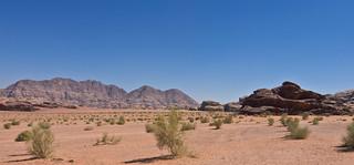 Wadi Rum  / وادي رم # 32