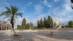 FMG_2526 (Marco Gualtieri) Tags: israele palestina galilea giudea terrasanta pellegrinaggio marcone1960 nikond850 d850