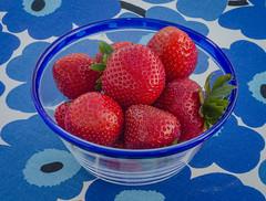 Our first locally grown strawberries (frankmh) Tags: berry strawberry locallygrown hittarp skåne helsingborg sweden dessert