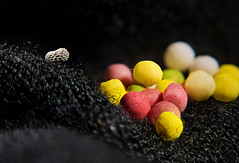 Sepherding sweeties... (Altazur) Tags: macro sweet candy lowkey abstract abstractmacro abstractphotography color contrast texture black fabric herd