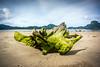 Palawan - El Nido (Ryan W Payne) Tags: backpacking beach driftwood elnido nex7 palawan philippines sonyalphanex7 travel