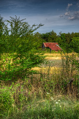 DMT_20180608183014 (Felicia Foto) Tags: barn agriculturalstorage ruraldecay allrightsreserved denisetschida unionvilletennessee middletennessee barbedwirefence fence trees field rust tinroof clouds outdoor evening hdr highdynamicrange 3xp handheld photomatix photoshopcc2018 red green blue sky zionhillroad nikon nikond600 d600