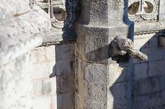 Gargouille Lisbonne (https://tinyurl.com/jsebouvi) Tags: lisbonne portugal tourdebelem tourdebelém animal architecture gargouille ligne motif ombre pierre shadow