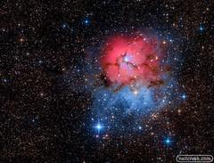 Trifid Nebula (neilcreek) Tags: astronomy astrophotography milkyway nebula stars galaxy space nightscaper nightsky nightscape cosmos milkywaychasers starrynight natgeospace astrophoto universetoday milkywaygalaxy longexposure nightphotography nightimages nightshooters igastrophotography skymasters universe stargazing longexposureshots trifid m20 blue pink red