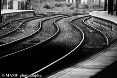 Lines. (Please follow my work.) Tags: art arty artistic britain blackandwhite blackwhite bw biancoenero blanco brilliantphoto blancoynegro blancoenero candid city citycentre railwaystation railwaylines railwaystationplatform dark england enblancoynegro ennoiretblanc flickrcom flickr google googleimages gb greatbritain greatphotographers greatphoto image inbiancoenero interesting june leeds ls1 leedscitycentre leedscitystation mamfphotography mamf monochrome nikon nikond7100 noiretblanc northernengland noir negro north photography photo pretoebranco photograph photographer quality railway schwarzundweis schwarz town uk unitedkingdom upnorth urban westyorkshire excellentphoto yorkshire zwartenwit zwartwit zwart