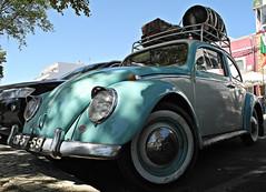 Olhão 2017 - Volkswagen CB-37-59 (Markus Lüske) Tags: portugal algarve ria riaformosa olhao olhão ilhadaarmona armona lueske lüske