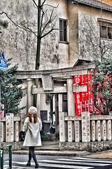 (LaTur) Tags: asia japan tokyo city urban woman shrine