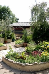 2017 - Open Square Garden - Saturday - 03 - Freightliners City Farm-7152 (Out To The Streets) Tags: 2017 20170617 europe freightlinerscityfarm june2017 london opengardensquares opengardensquares2017 opengardensquares2017sunday uk unitedkingdom green plants
