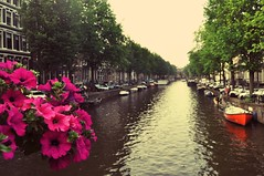 And meet me there, bundles of flowers we'll wade through the hours of cold (StellaDeLMattino) Tags: amsterdam netherlands europe canal river amstel flowers pov water boats light reflection pink fuxia trees nikon d5000 landscape view outdoor trip travel