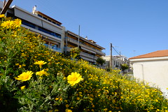 DSCF6585 (MattJo-tw) Tags: 希臘 雅典 evaggelistria 比雷埃夫斯 puertodemikrolimano