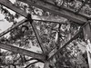 B&W Woods (Pejasar) Tags: geometric refines organic mix natural manmade angles oklahoma tulsa linnaeusteachinggarden blackandwhite bw textures trees beams woods