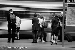 Train Please follow me and leave a comment if you like my work.  I would love to follow you back, but please no group advertisements.moton blur at Leeds city station (Please follow my work.) Tags: motionblur motion artistic britain blackandwhite blackwhite bw biancoenero blanco brilliantphoto blancoynegro blancoenero candid city citycentre dark england enblancoynegro ennoiretblanc flickrcom flickr google googleimages gb greatbritain greatphotographers greatphoto image inbiancoenero interesting leeds ls1 leedscitycentre leedscitystation mamfphotography mamf monochrome nikon nikond7100 noiretblanc northernengland noir north photography photo pretoebranco photograph photographer people person train railway railwaystation uk unitedkingdom upnorth urban westyorkshire excellentphoto yorkshire zwartenwit zwartwit zwart