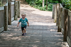 A little man on a mission (Out chasing the light) Tags: week51 leading lines