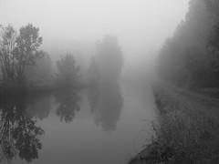 (Jean-Luc Léopoldi) Tags: brouillard mist fog brume rivière arbres chemindehalage towpath