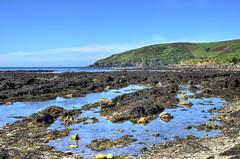 Rocks pools at Hannafore, West Looe, Cornwall (Baz Richardson (catching up again)) Tags: cornwall looe westlooe hannaforebeach rockshelves rockpools