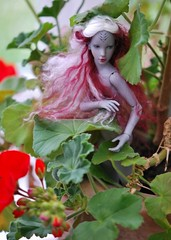 Do you believe in elves? (stashraider) Tags: lami oxana geets bardo research resin ball jointed art doll