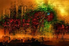 mani-578 (Pierre-Plante) Tags: art digital abstract manipulation painting