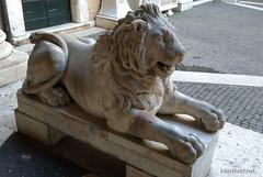 Музей Капітолію, Рим Italy InterNetri 076