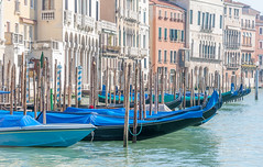 One morning all in a row (filipmije) Tags: venice canal canalegrande gondola morning pastel building venetian