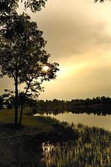 the Day awake (tucsontec) Tags: sun sonnenaufgang sunrise travel trees tourism lake see water wasser schatten shadow sky germany sonne sonnenlicht morning almensee nature landschaft landscape