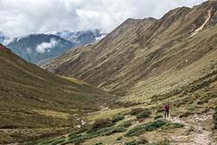 Hiker on the way to Jare La (or Jhari La) pass - Thimphu District - Snowman Trek - Bhutan (PascalBo) Tags: nikon d500 asie asia southasia asiedusud drukyul drukgyalkhap bhutan bhoutan འབྲུག་ཡུལ། འབྲུག་རྒྱལ་ཁབ་ snowman trek trekking hike hiking lunana thimphu himalaya himalayas jigmedorjinationalpark trekker montagne mountain trail sentier outdoor outdoors pascalboegli