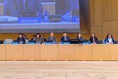 Standing Committee on Copyright and Related Rights (WIPO | OMPI) Tags: chair deputydirectorgeneral director directorgeneral francisgurry michelewoods ompi sccr singapore sylvieforbin wipo womenandip