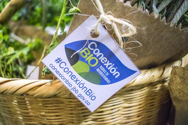 Material vegetal lanzamiento de Conexión Bio