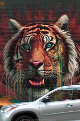 New York Street Art (jomak14) Tags: fotodioxproeostom43adapter manhattan manualfocus microfourthirds murals nyc newyork omtoeosadapter olympusep2 panasonic streetart urbanart vintagelens zuiko55mmf12 wallart